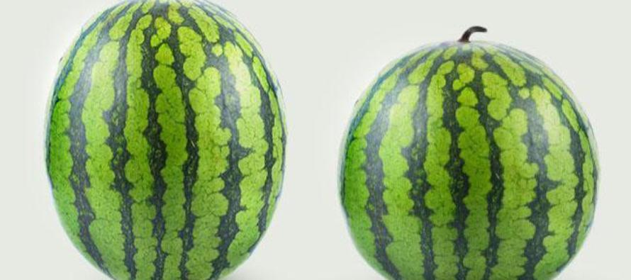 5 NÕUANNET, kuidas valida täiuslikult küps ja maitsev arbuus
