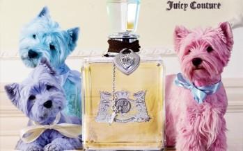 Auhinnamäng: Liitu Gossip.ee lehega Facebookis ja võida Juice Couture parfüüm!