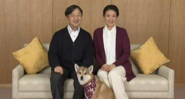 Tutvume lähemalt Jaapani kroonprintsess Masako´ga, kellest saab peagi keisrinna