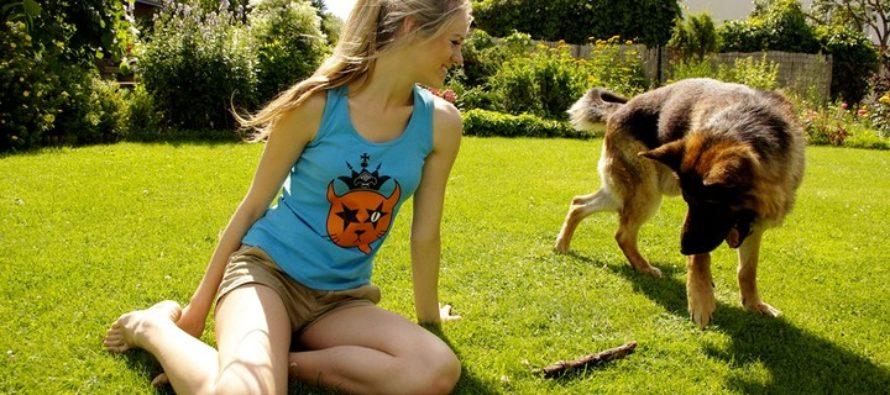 Kas koera taibukusele saab anda hinnangu tema füüsilise suuruse järgi?