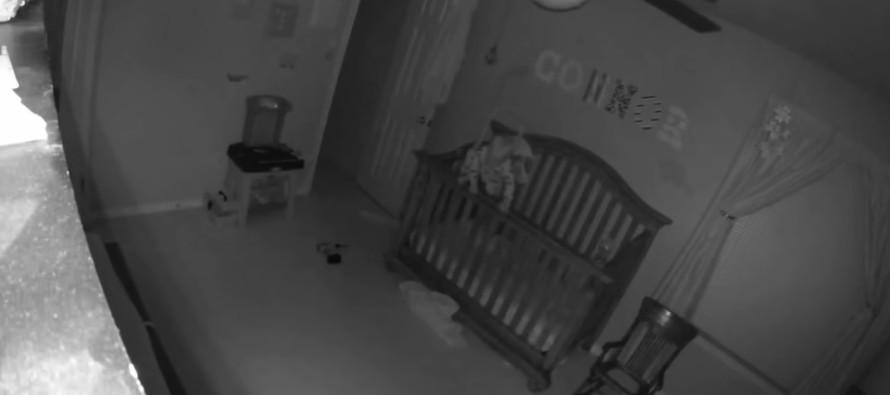 Lastetoa kaamera jäädvustas šhokeeriva momendi, mis ringleb nüüd nagu kulutuli mööda maailma