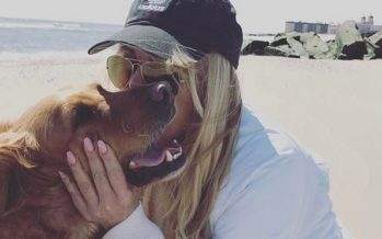 TOHOH! Dina Lohan soovib abielluda mehega, keda tunneb vaid läbi interneti