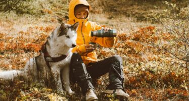 Muuda suvi ja reisimine koera jaoks turvaliseks