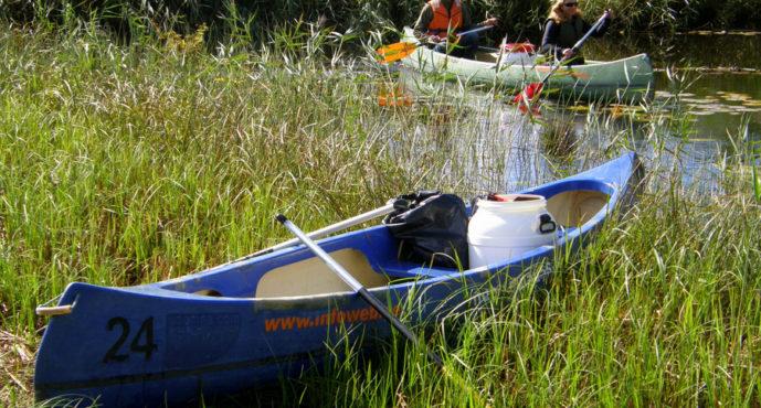 Reisi Eestis: 8 põhjust suvisel Soomaal kanuutamiseks + FOTOD!