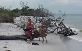 Reily Perez-Nõmm: Tihti unustame, et oleme siin vaid looduse armulikkusest