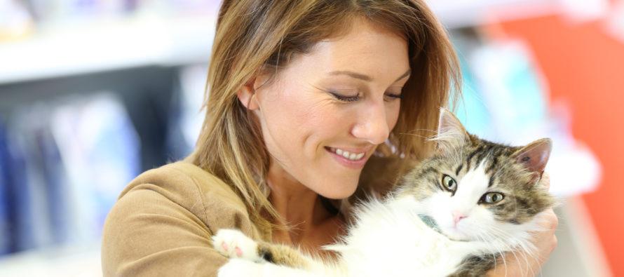 Hea teada! 8 FAKTI kasside kohta, mis isegi kassisõpru üllatavad